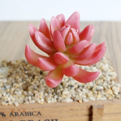 Various Artificial Succulent Plants Lotus Landscape Decorative Flower Mini Green Fake Succulents Plant Garden Arrangement Decor C18112602