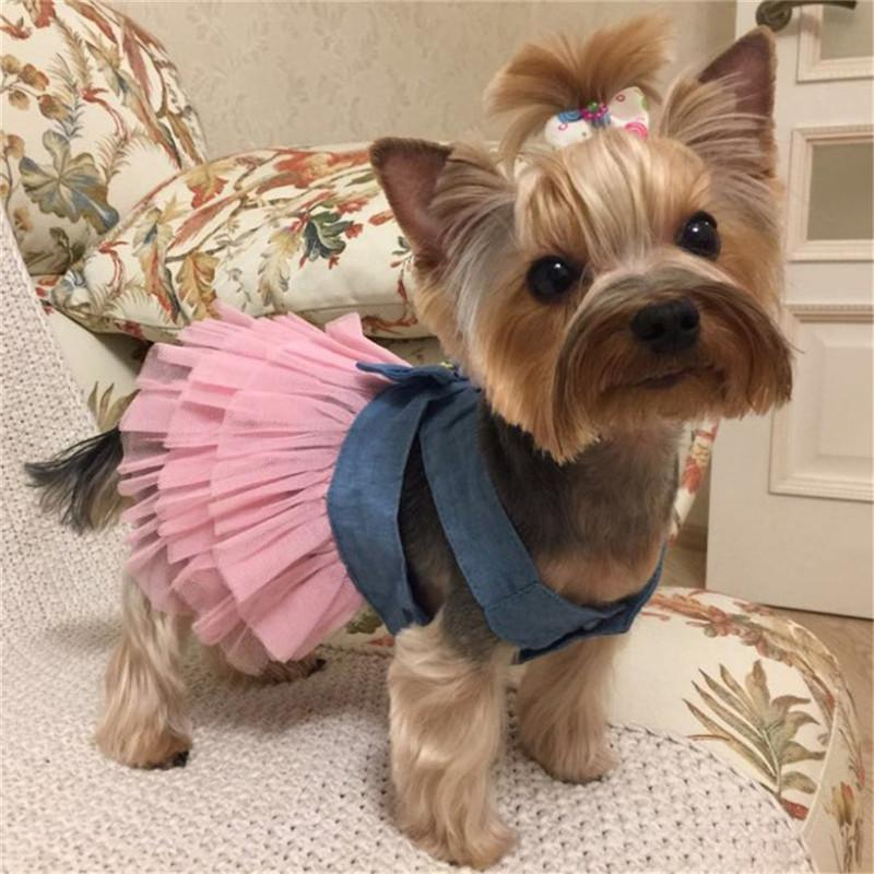 Summer Dog Dress Pet Dog Clothes for Small Dog Wedding Dress Skirt Puppy Clothing Spring Fashion Jean Pet Clothes10