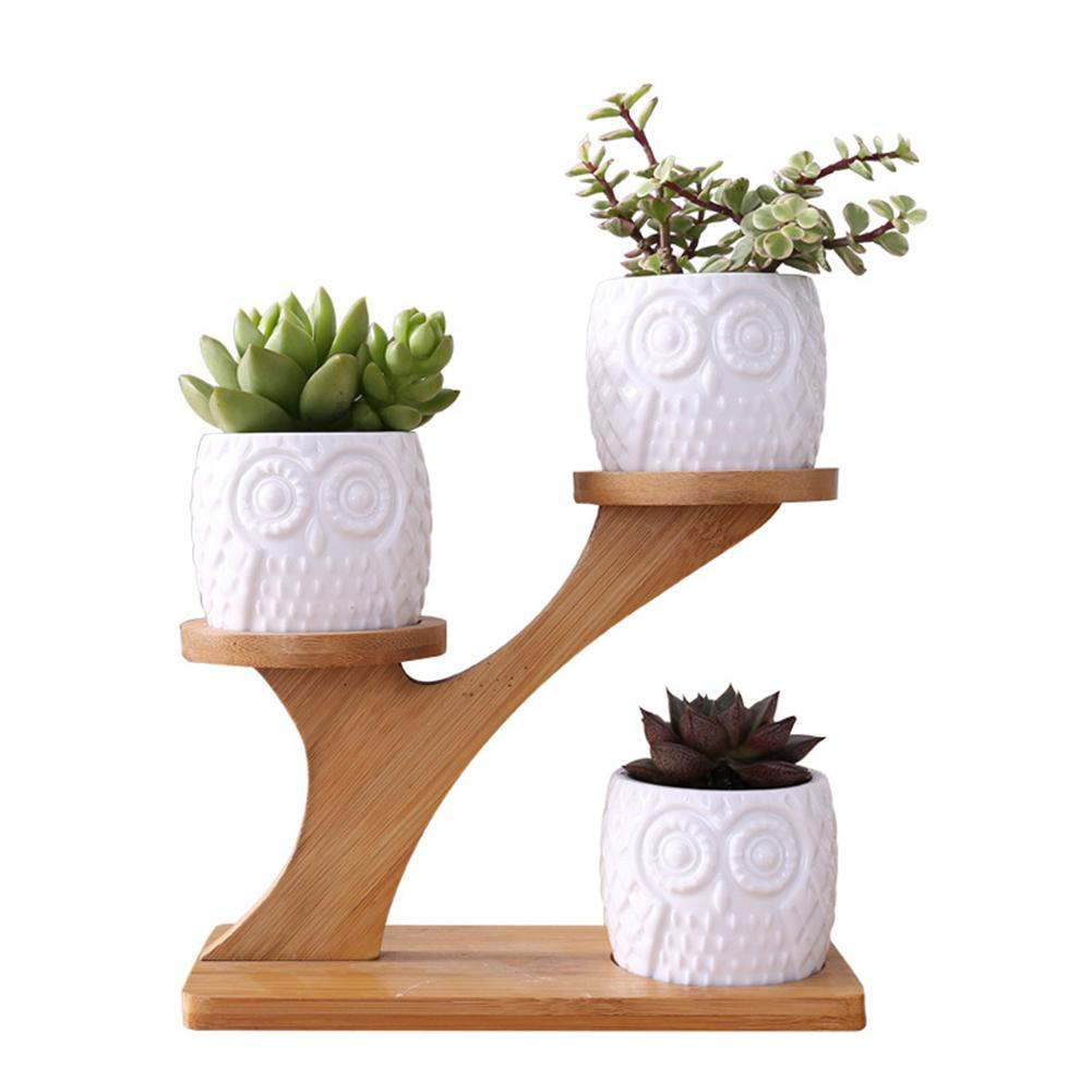 Contour De Balcon En Bambou simple blanc succulent plant pot de fleurs en céramique porte chouette  citrouille motif pot arboricole en forme de bambou shelf pot planteur set
