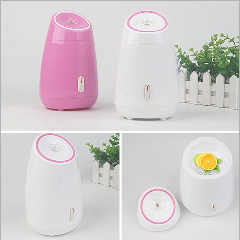Facial Steamer Diy Fruit Steam Sprayer Beauty Machine Nano Ionic Mist Face Humidifier Sauna Facial Moisturizing Pore Cleansing