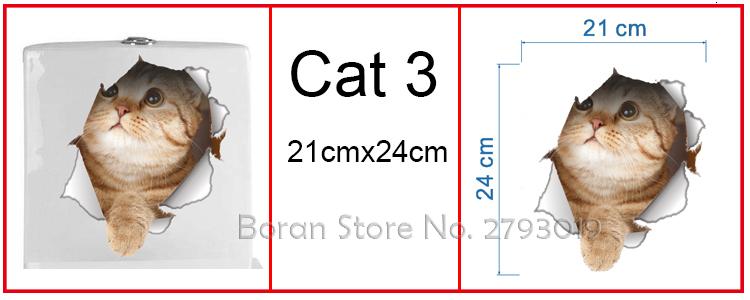 cat 3 -1