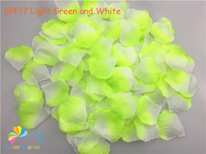 SPF17 Light Green and White