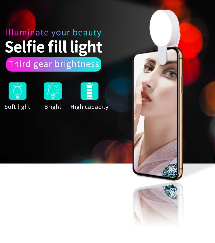 Fill Light Details_01