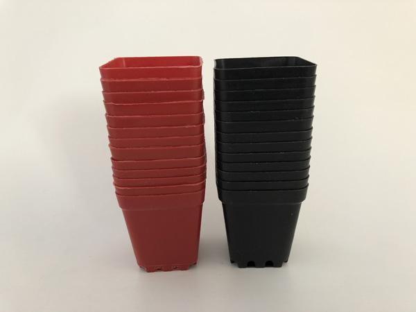 D5.5XH6CM Minimum Nursery Pots Plastic Planters Square Succulents Holder Garden Supplies Black Color Wholesale