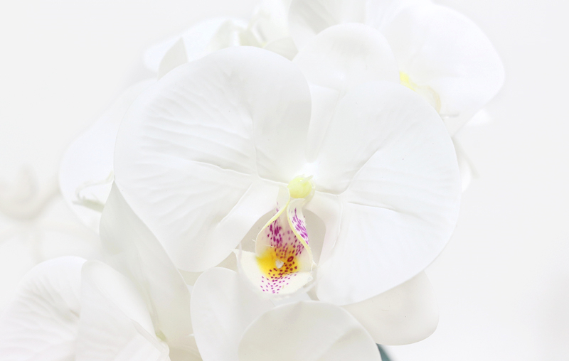 Artificial Orchid Flower 4 color Real Touch Artificial Butterfly Orchid flores artificial Wedding decoration home Festival Decor (18)