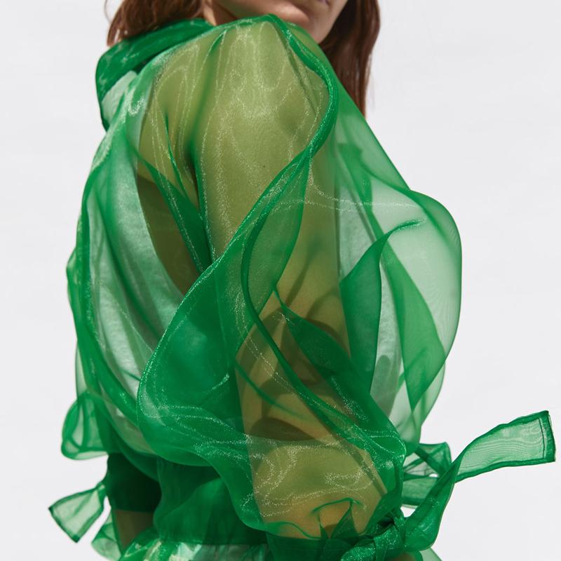 Прозрачный органза куртка женская мода с длинным рукавом куртки пальто женщины элегантный воротник куртка с учетом женские женские EU01 Y190829