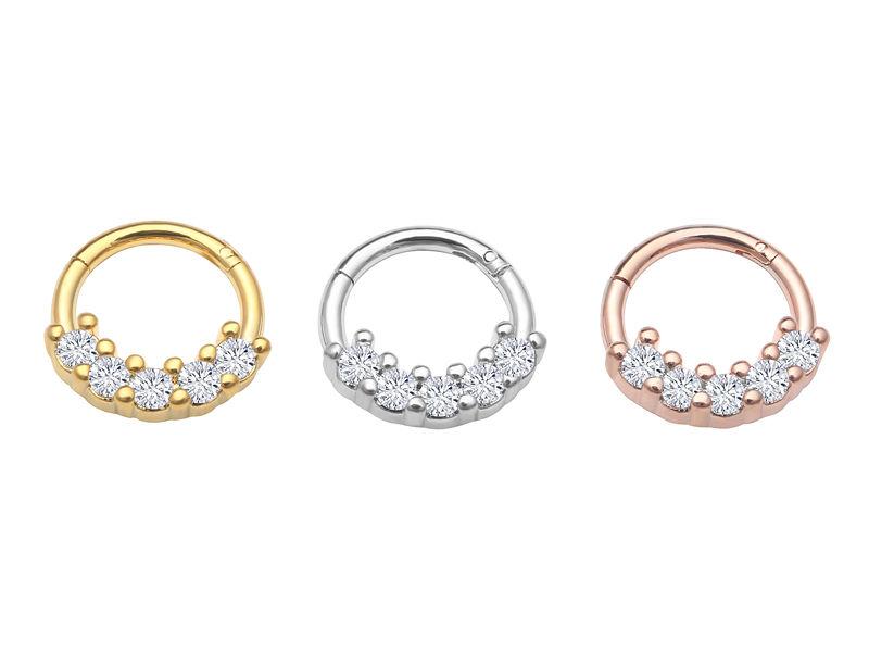 Titanium Seamless Segment Clicker Septum Lip Ear Nose Ring Piercing Hoop SP