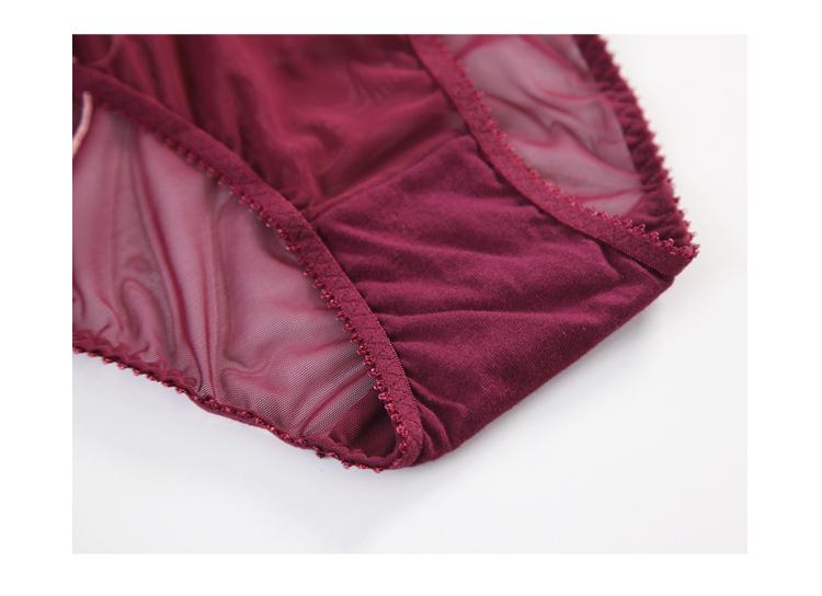 TERMEZY 2019 new Sexy Lace bar set ultra thin net gauze transparent Lingerie Set Push up brassier Fashion lace underwear (2)