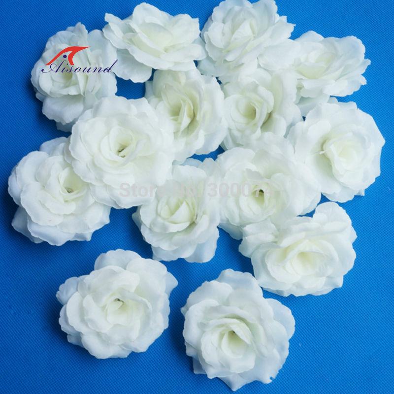 Milk white rose flowers