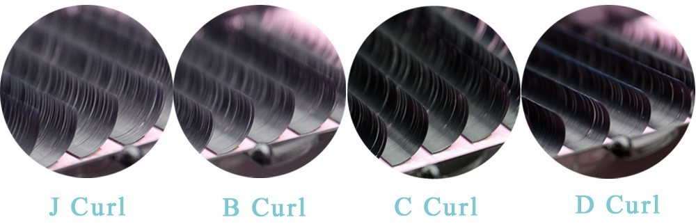 jbcd curl