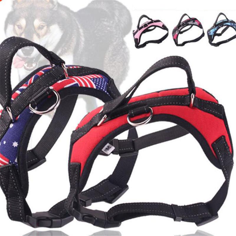 """14/"""" tamaño del cuello diseño De Tela Gratis Collar de perro y conjunto de plomo que empareja 10/"""""""