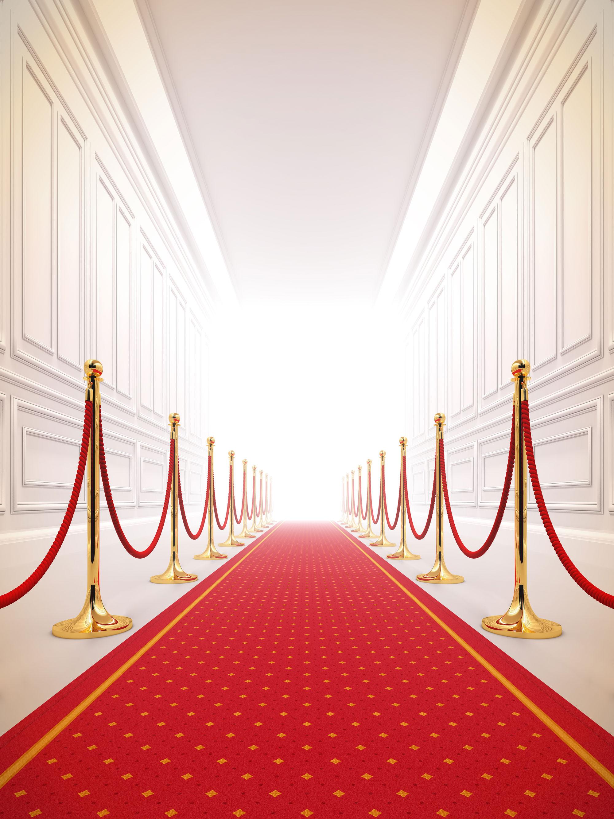 Wedding Carpet from 2,95//m² Reception Carpet Red Carpet VIP carpet Runner
