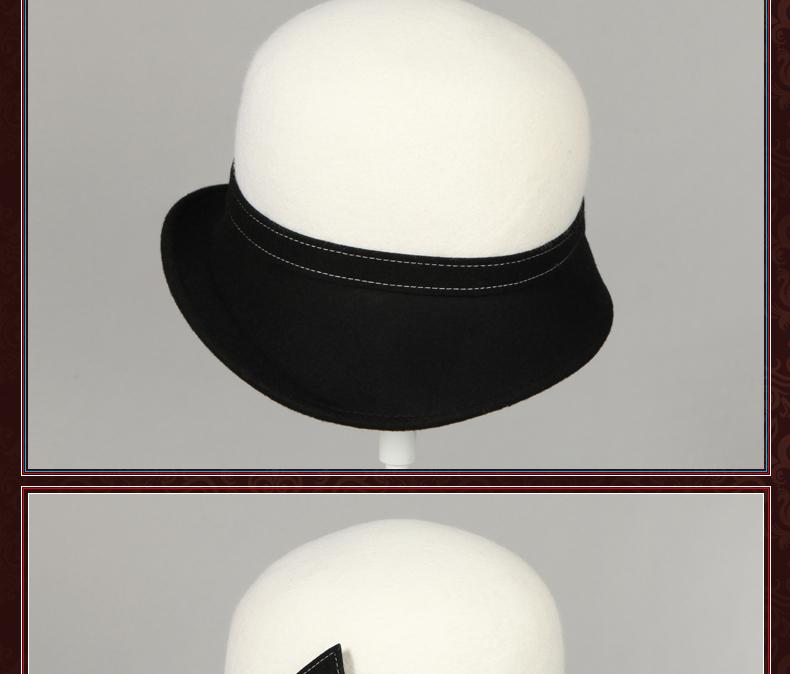 elegant hat winter women