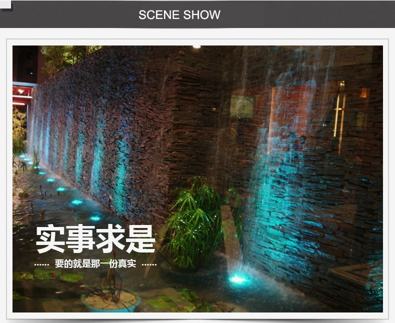 SCENE SHOW