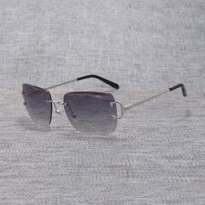rimless sunglasses (1)