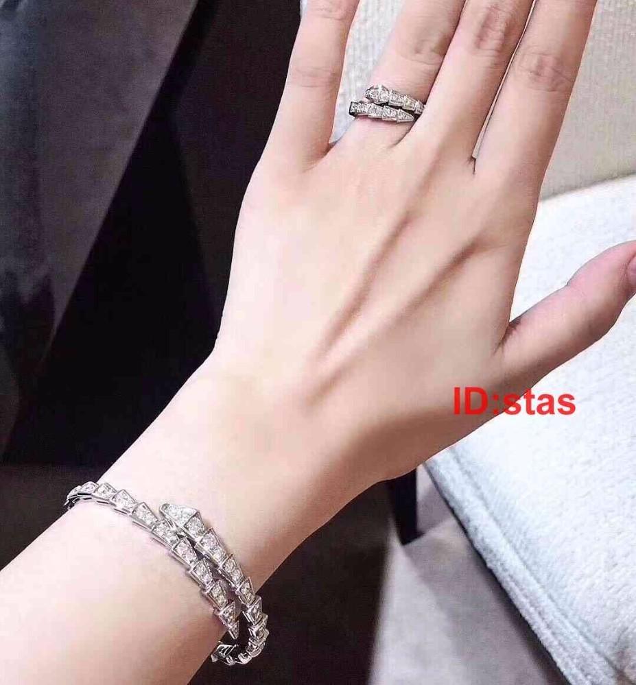Top Qualität Titan Stahl Serpentine Rose Gold Silber Diamant Luxus Designer Frauen Männer Schmuck Armreif Armbänder