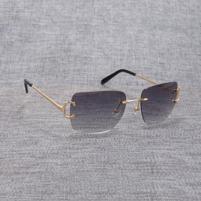 rimless sunglasses (2)