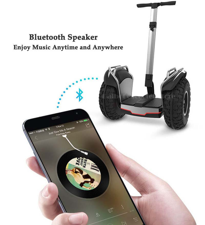 Daibot Off Road Electric Scooter 19 Inch Self Balancing Scooters 1200W2 Adults Skateboard Hoverboard With BluetoothAPP (3)