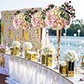 Health , Hair & Wedding