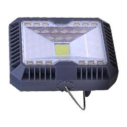 Edison2011 Solar Floodlight Spotlight