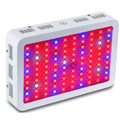 1000W LED Grow Lights