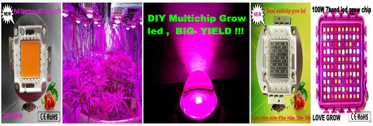 China Cree Cob Led Grow Light Seller Chinese Complete