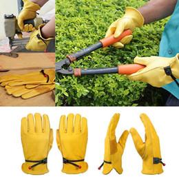 Travail Gants Véritable Vachette Cuir Réglable Bracelet pour coupe de bois jardin